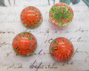 1 cabochon resin with dried orange clear 20 mm pink Daisy flower