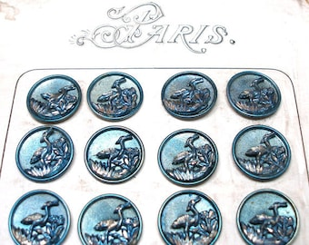 Antique French BUTTON Card, 24 Victorian Birds with blue tint, unused on original card. Crane, heron. Made in France.