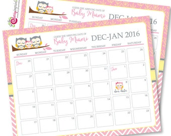 Owl Family Girl Guess the Due Date Calendar - Mom and Baby Owl or Coed Owl  Baby Shower Birthday Prediction - Printable DIY