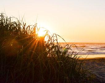 Oregon Beach Printable