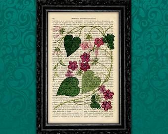 Vines Botanical Art Print Antique Flower Kitchen Poster Greenery  Print Gift Vintage Wall Decor Poster Dictionary Garden Wall Decor (Nº7)