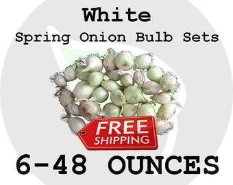 2018 Spring Onion Bulb Sets (White) - Organically Grown Seed Onions, Non-GMO - FREE SHIPPING!