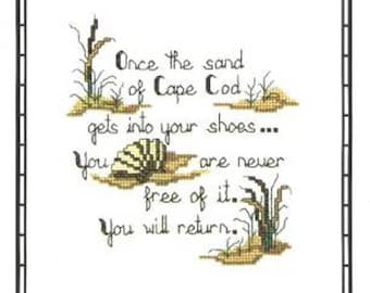 Sand of Cape Cod