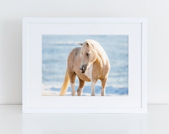Horse Wall Art, Beach Decor, Wild Horse Photography, Equine Print, Sunrise, Assateague Island, Horse Photo, Nursery Decor