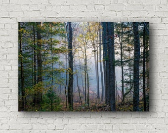 Forest Canvas Wall Art Decor - Gallery Wrapped Canvas of Trees in Early Morning Fog in the Great Smoky Mountains Nature Canvas Decorations
