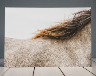 Abstract Horse Print | Wild Horse Photograph | Horse Photography | Equine Fine Art Prints | Bedroom Wall Print | Home Decor
