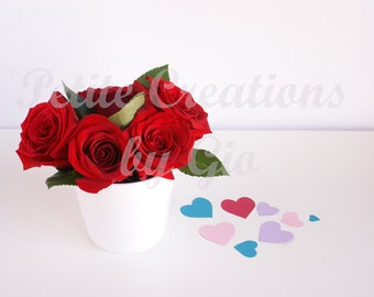 Styled Stock Photography, Roses and Heart Confetti
