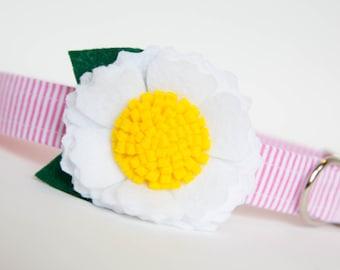 Flower Dog Collar - White Blossom on Pink Seersucker