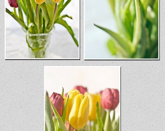 Canvas wall art flowers set of 3 Tulips print Spring Fine art Home decor hall dining room macro Mother's day gift 8x12 12x18 16x24 24x36