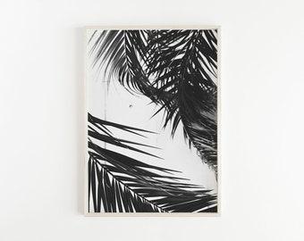 Palm Leaf Print, Palm Tree Print, Palm Print, Tropical Leaves, Black and White Palm Tree, Tropical Poster, Modern Art, Tropical Home Decor