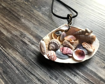 Shells in shell pendant !