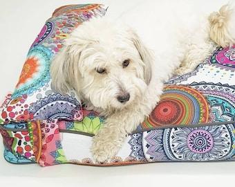 Qushin Balota, dog, dogs bed, dogs, home