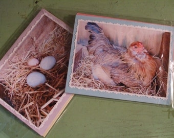 Easter Card Chicken Eggs Photo Card Set of 2 Spring Chicken Eggs