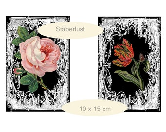 4 x roses and tulips on chalkboard with white frame instant download postcards  vintage