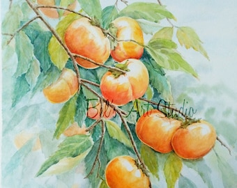 Persimmons II - Watercolour Painting Print