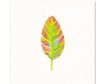Pink Prayer Plant Leaf.  Prayer Plant Watercolor Decor.  Art Print.
