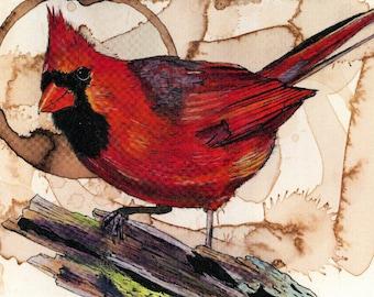 Coffee Art- Cardinal watercolor painting, Cardinal Print, Coffee Stained Paper, Bird Art, Bird Print, Cardinal Painting, Bird Decor, Coffee