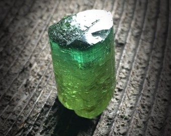 RAINFOREST Green Tourmaline Crystal Specimen! ~ collector nature mountain travel woods dreams love