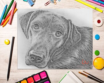 Adult Coloring Page, Coloring Pages, Instant download coloring, Labrador coloring page, coloring pages, coloring for adults, Printable