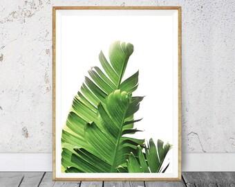 Banana Leaf Print, Banana Leaves Art, Tropical Wall Art, Tropical Plant, Printable Art, Leaf Print, Botanical Leaf Art, Palm Leaf Print