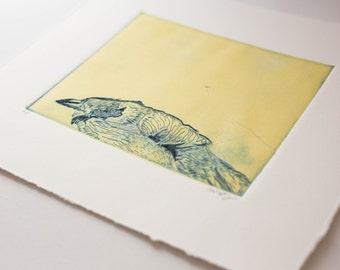 Original Art Yellow and Blue Bird Monoprint