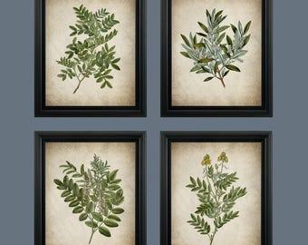 Vintage Green leaf Print - Botanical Wall Art Plant Decor - Green Plant Leaf Digital Download - #COL-002