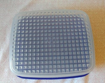 Vintage Tupperware season serve marinator