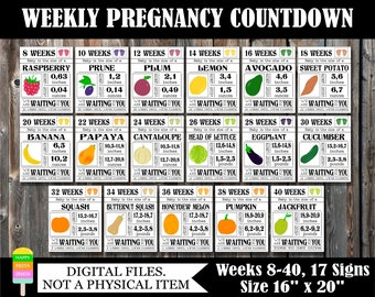 PRINTABLE Pregnancy Countdown Signs-Weekly Pregnancy Countdown-Pregnancy Photo Prop-Weeks 8-40/17 Signs/Size 16x20-Baby Tracker-Baby Bump