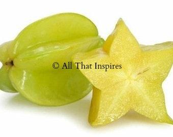 Star Fruit Tree Seeds -  Averrhoa carambola - Tropical Seeds - Exotic Seeds - Houseplant