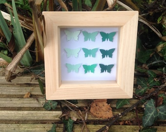 unique butterfly shadow box
