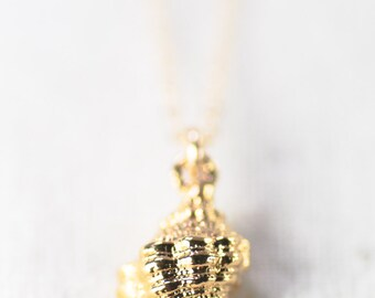Maka necklace - gold drupe shell necklace, delicate shell necklace, hawaiian necklace, drupe shell necklace, beach wedding necklace, hawaii
