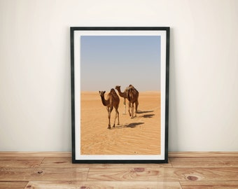 Three camels in the desert-in the sand under the blue sky in the background-digital download