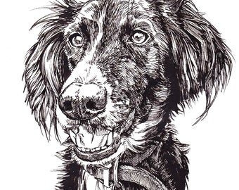 Custom Pen and Ink Animal Portrait