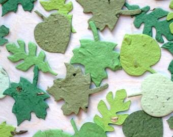 200 Flower Seed Paper Confetti Leaves - Fall Wedding Favors - Oak Maple Leaf Birch - Fall Plantable Paper Leaves