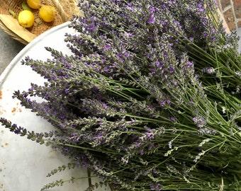Lavender- Dried Lavender Flowers - Organic Homegrown Lavender - Etsy Studio - Fragrant Lavender - Pot Pouri Lavender - Australian Seller