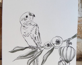 "Ink drawing ""parakeet and love in a cage"" size 15x15cm"