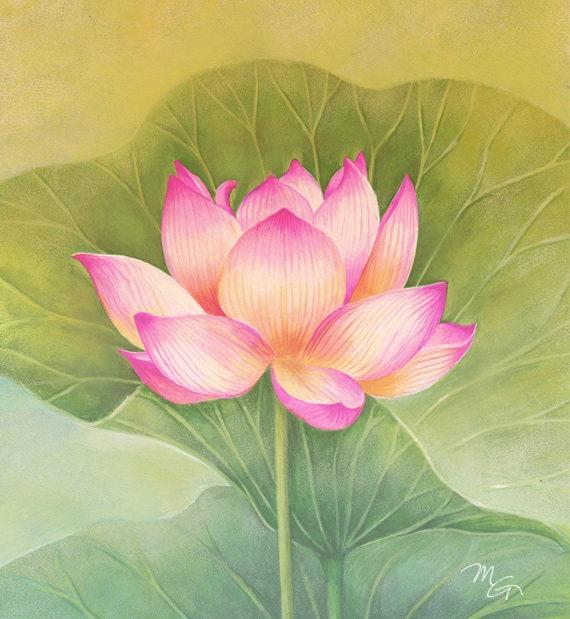 Lotus Painting Acrylic