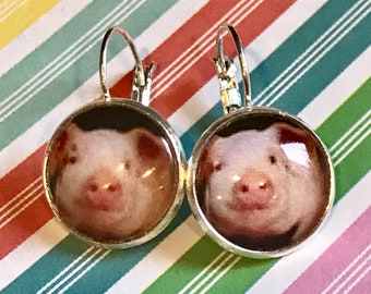 Pigs cabochon earrings - 16mm