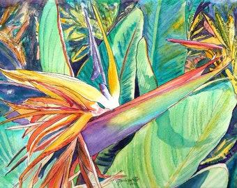 Bird of Paradise Art, Tropical Flower paintings, 8x10 prints, Hawaiian decor, Kauai wall art, exotic flower art, tropical plants, floral art