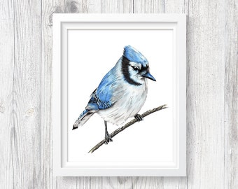 Blue Jay Art - PRINTABLE Watercolor Blue Jay Decor, Woodland Bird Painting, Forest Bedroom Decor, Bird On Branch, Instant Download ACC196