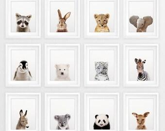Nursery Animals Prints, Baby Animals Set 12, Nursery Decor, Woodland Animal Print, Safari Animal, Cute Baby Animals, Kids Room Printable Art