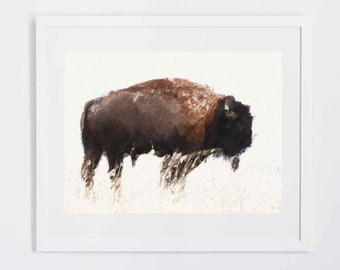 Buffalo Watercolor, Digital Print