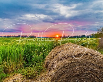 Field and Hay Bale Sunrise Photography Print