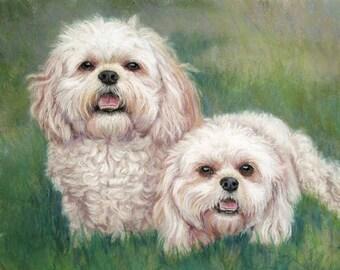 """Two Pets - Custom Pet Portrait in pastels  9""""x 12"""""""