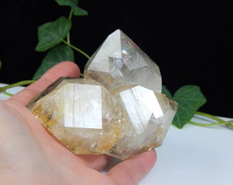 Golden Healer Herkimer Diamond Record Keeper Crystal Cluster w/ Breautiful Rainbow Display - Genuine NY Mineral Perfect for Metaphysical Use