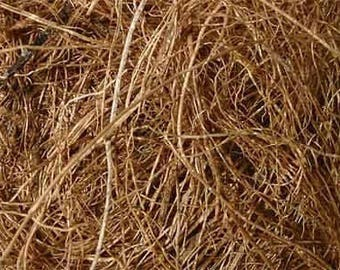 COCONUT FIBRE- Natural dye or stuffing material