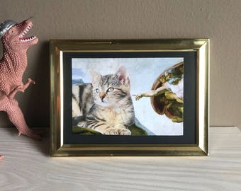 The Creation of Cat
