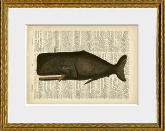 Dictionary Page Print CROOKED-TOOTHED WHALE - an upcycled antique dictionary page with an antique ocean illustration - beach house decor