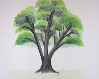 Watercolor Maple Tree