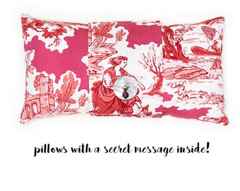 French Toile - pillow with a secret message